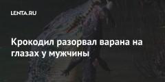 Крокодил разорвал варана на глазах у мужчины