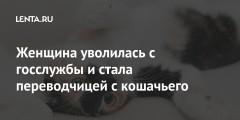 Женщина уволилась с госслужбы и стала переводчицей с кошачьего
