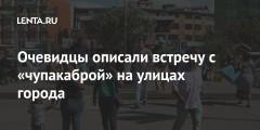Очевидцы описали встречу с «чупакаброй» на улицах города