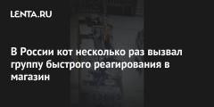 В России кот несколько раз вызвал группу быстрого реагирования в магазин