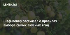 Шеф-повар рассказал о правилах выбора самых вкусных ягод