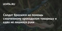 Солдат бросился на помощь схваченному крокодилом товарищу и едва не лишился руки